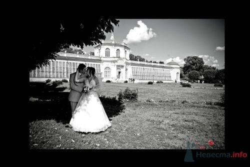 Фото 4478 в коллекции Свадебные - Фотограф Сапелкин Николай