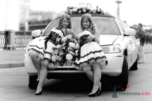 Фото 7316 в коллекции Свадебная фотография