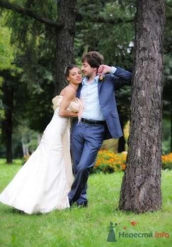 Фото 7326 в коллекции Свадебная фотография - Свадебный фотограф Альберт Хаиров