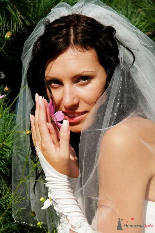 Фото 73998 в коллекции Свадебные радости! - Роман Савин