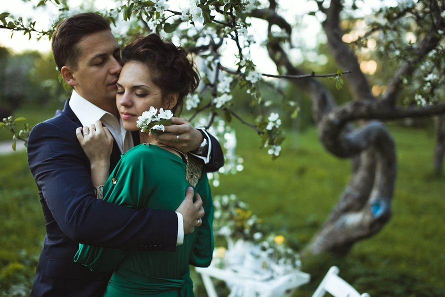 Фото 1934891 в коллекции Весенняя LoveStory в яблоневом саду - Свадебный фотограф Анна Алфёрова