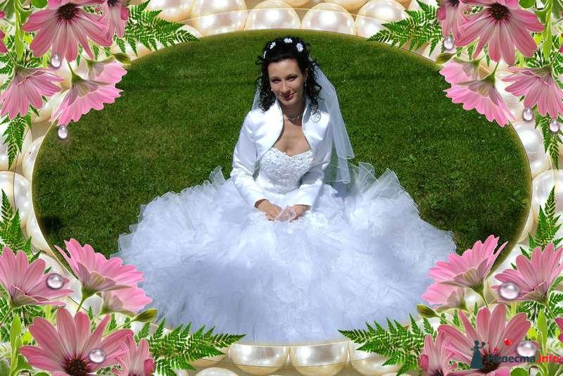 Фото 118554 в коллекции Мои фотографии - ***ANGEL***