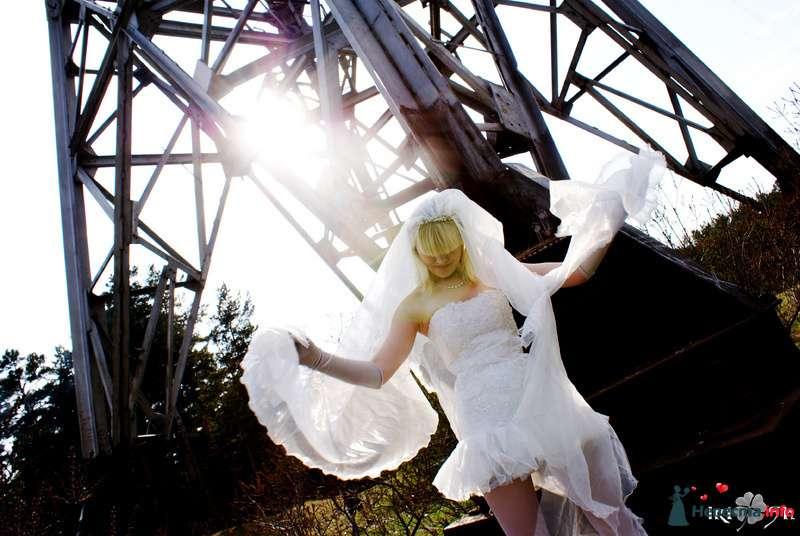 Фото 103726 в коллекции Свадебный +7 923 673 33 05 - Свадебная фея