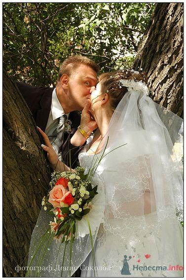 Фото 74612 в коллекции свадебные фото - Денис Соколов