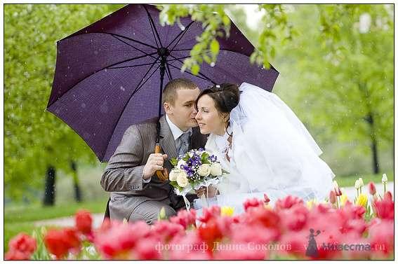 Фото 74884 в коллекции свадебные фото - Фотограф Денис Соколов