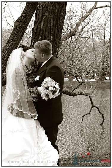 Фото 74889 в коллекции свадебные фото - Фотограф Денис Соколов