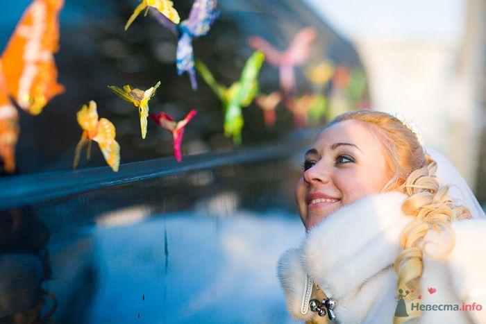 Фото 76215 - Дуэт фотогрфов Никифоров Костя и Гордеев Сергей