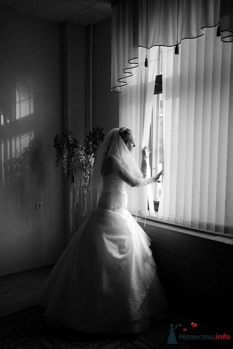 Фото 76239 в коллекции Рома и Марина | День свадьбы