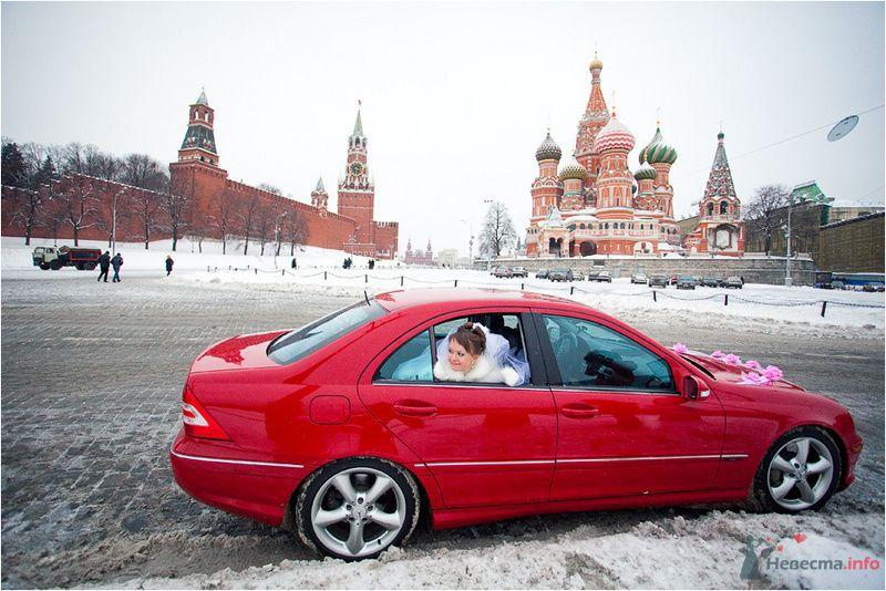 Фото 77647 в коллекции Ваня и Таня - Фотографы Никифоровы-Гордеевы Сергей и Константин