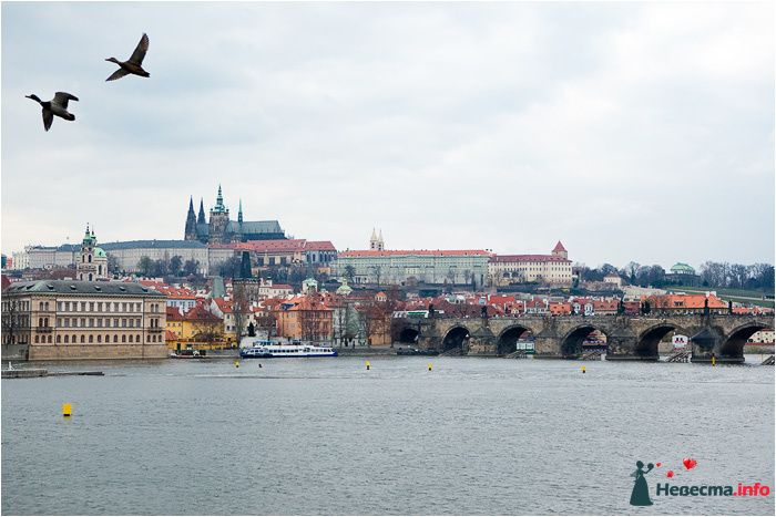 Фото 90703 в коллекции Прага - Фотографы Никифоровы-Гордеевы Сергей и Константин