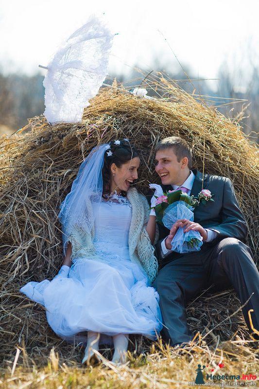 Фото 98450 в коллекции Миша и Лена - Фотографы Никифоровы-Гордеевы Сергей и Константин