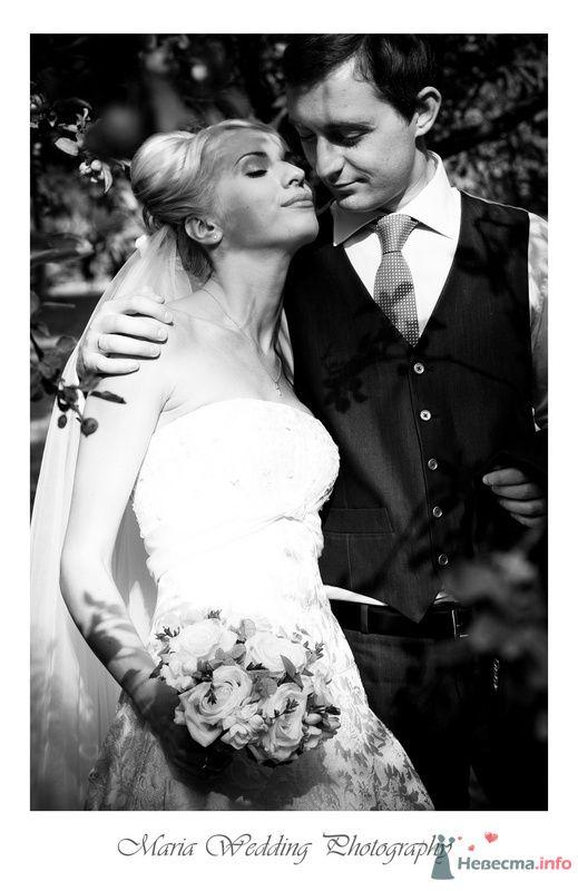 Фото 76524 в коллекции Мои фотографии - Maria Althaus - свадебный фотограф