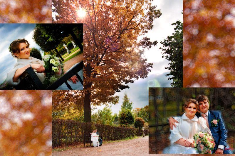 9 - фото 75772 Свадебный фотограф Владимир Повар