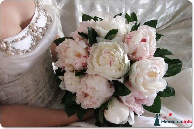 Фото 123043 в коллекции Букет невесты! - Катерина!