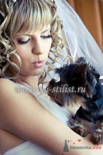 Фото 76622 в коллекции Невесты - Стилист Скачкова Света