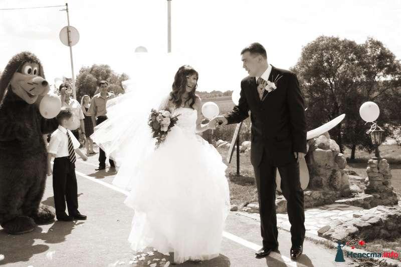 Фото 115729 в коллекции Моя свадьба - Стилист Скачкова Света