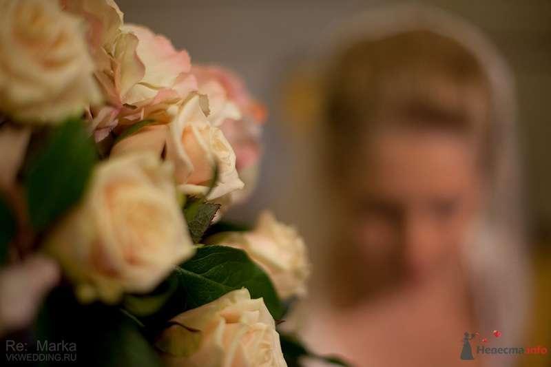 Фото 77714 в коллекции Свадебная фотография  - Свадебный фотограф Ремарк Юлия