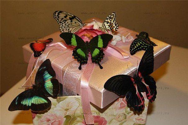 Бабочки в коробке подарок цена волгоград 60
