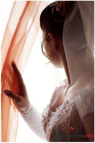 Фото 77452 в коллекции Свадебное портфолио