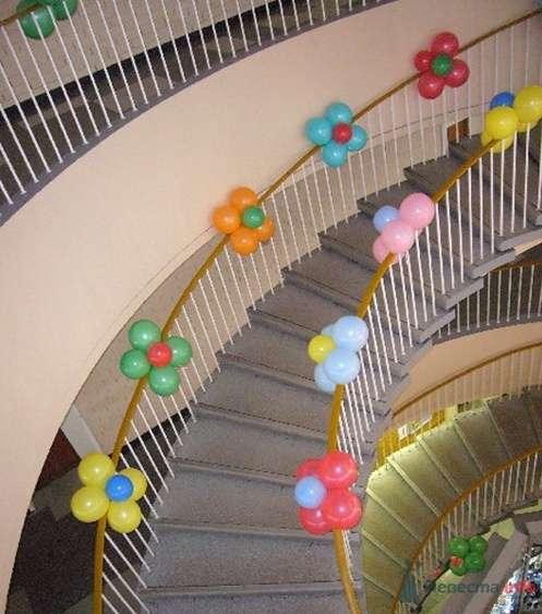 Фото 38711 в коллекции Украшение банкетного зала воздушными шарами - Дизайн-студия «Art-Infinity»