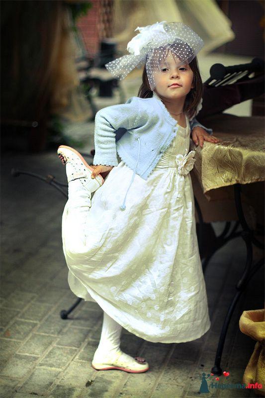 Фото 112342 в коллекции Свадебная фотография - Вера Владимирова - свадебный фотограф