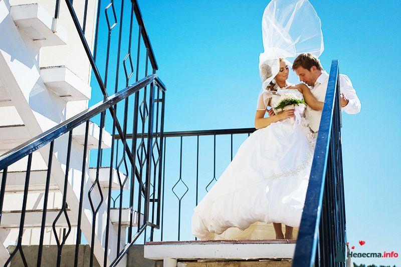 Жених и невеста стоят, прислонившись друг к другу, на фоне голубого - фото 94360 Light Photo Studio - фотограф