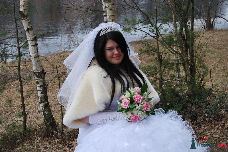 Фото 93782 в коллекции Свадьба - НадиН17