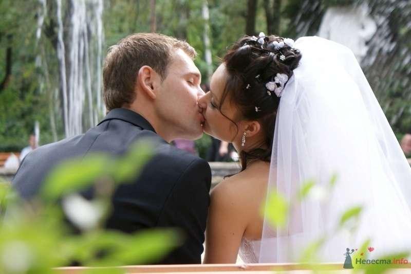 поцелуй - фото 78769 Дмитрий Меньшиков видеооператор