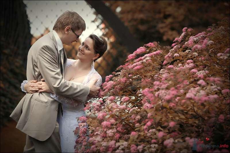 Свадебное фото - фото 80105 Черепанов Артем фотограф