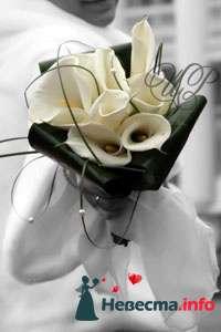 Фото 80753 в коллекции Образцы свадебных букетов - Цветочный Рай - флористы