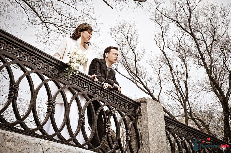 Жених и невеста с букетом цветов стоят вместе в парке возле ограждения - фото 93044 Фотограф Юлия Самохина