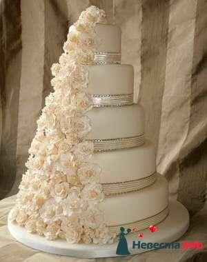 Фото 84734 в коллекции Торты - Свадебный распорядитель. Яна
