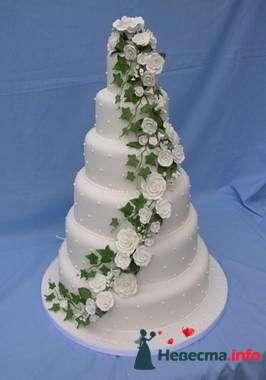 Фото 84773 в коллекции Торты - Свадебный распорядитель. Яна