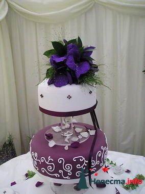 Фото 84809 в коллекции Торты - Свадебный распорядитель. Яна