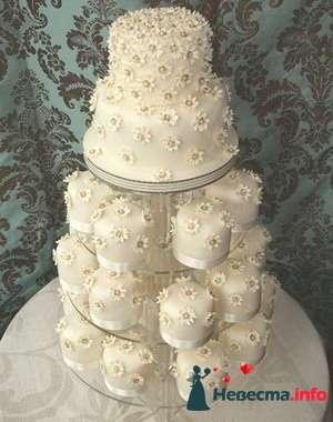 Фото 84821 в коллекции Торты - Свадебный распорядитель. Яна