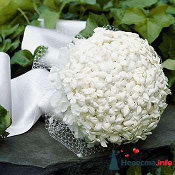 Фото 84862 в коллекции Букет Невесты - Свадебный распорядитель. Яна