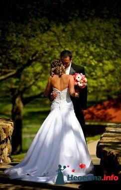 Фото 84881 в коллекции Свадьба