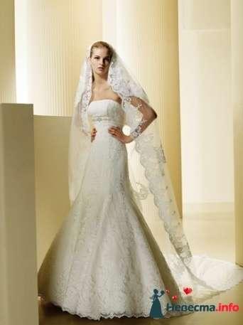 Фото 91405 в коллекции Свадьба - Свадебный распорядитель. Яна