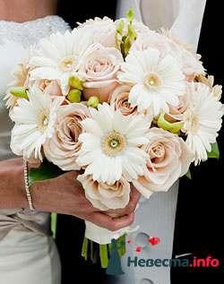 Фото 96603 в коллекции Букет Невесты - Свадебный распорядитель. Яна