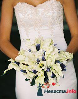 Фото 96625 в коллекции Букет Невесты - Свадебный распорядитель. Яна