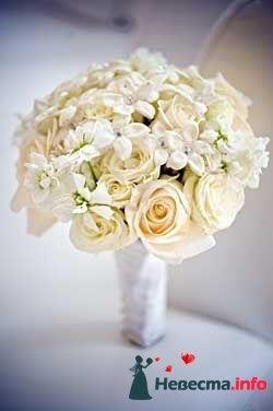 Фото 96644 в коллекции Букет Невесты - Свадебный распорядитель. Яна