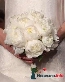 Фото 96656 в коллекции Букет Невесты - Свадебный распорядитель. Яна