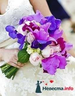 Фото 96660 в коллекции Букет Невесты - Свадебный распорядитель. Яна