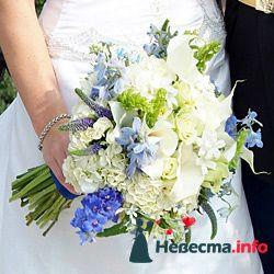 Фото 96663 в коллекции Букет Невесты - Свадебный распорядитель. Яна