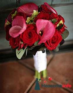 Фото 96684 в коллекции Букет Невесты - Свадебный распорядитель. Яна