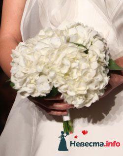 Фото 96696 в коллекции Букет Невесты