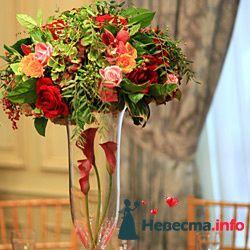 Фото 96740 в коллекции Флористика - Свадебный распорядитель. Яна