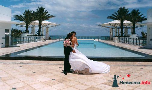 Фото 96772 в коллекции Свадьба - Свадебный распорядитель. Яна