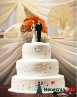 Фото 96795 в коллекции Торты - Свадебный распорядитель. Яна
