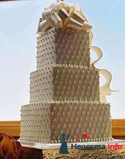Фото 96809 в коллекции Торты - Свадебный распорядитель. Яна